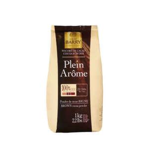 Cacao Barry Chocolate Cocoa Powder Plein 22-24%