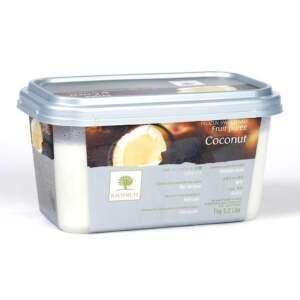 Ravifruit Coconut Puree